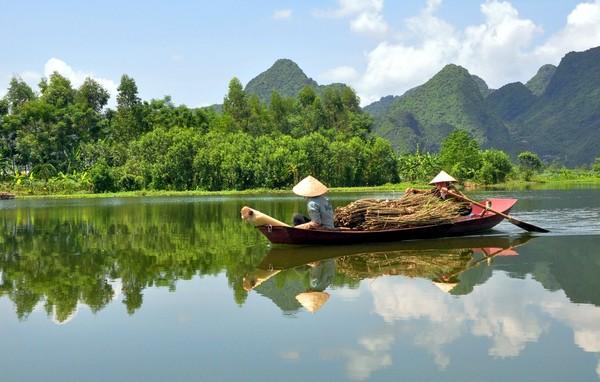 893-vietnam
